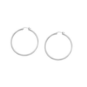 Hoop Earrings, Ss 2X20Mm Round Tube - Sh / Shiny