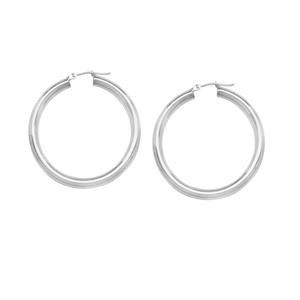 Hoop Earrings, Ss 4X25Mm Round Tube - Sh / Shiny
