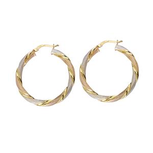 Hoop Earrings, Ss 25Mm Twisted Hoop Ear/Satin/Shiny