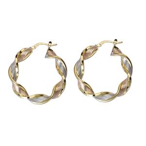 Hoop Earrings, Ss Fancy Twisted Hoop Ear/Satin/Shiny